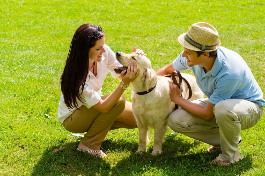 help-your-pet-fight-against-heat-stress